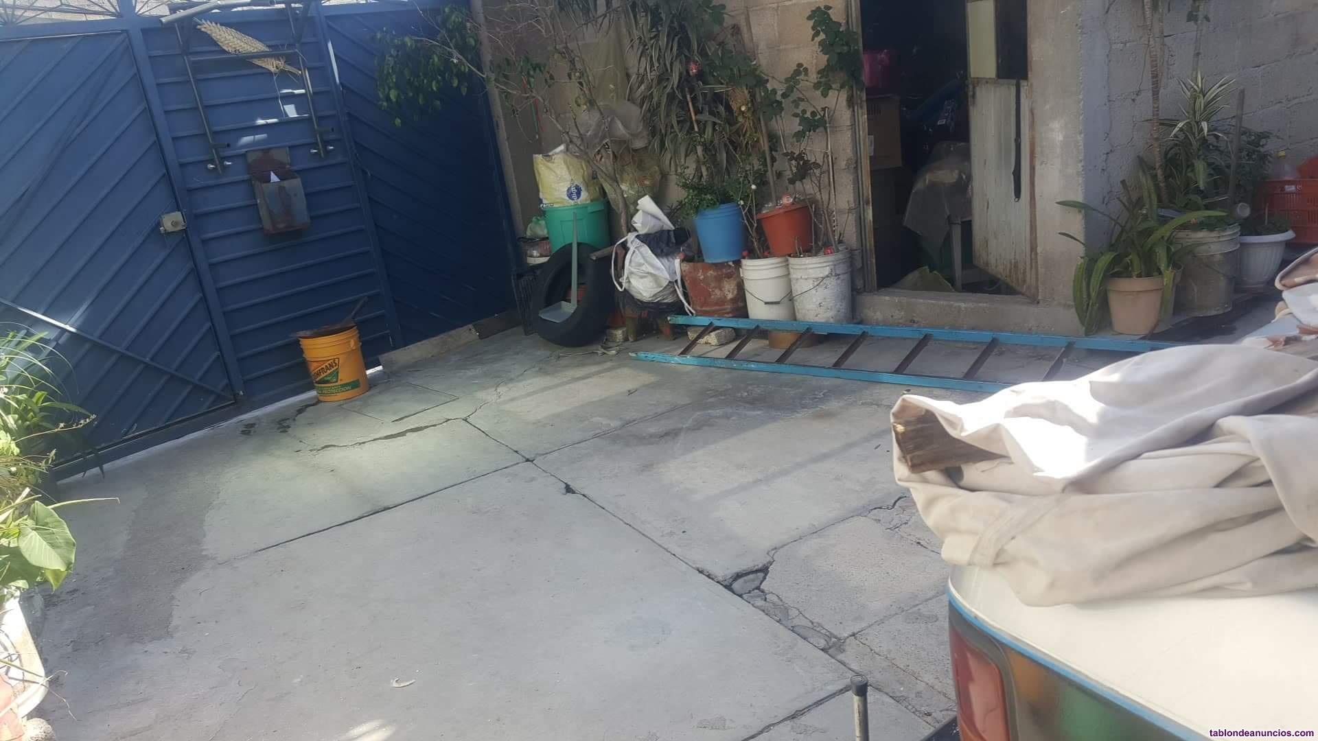 Guardería de perros/ cuidador de perros