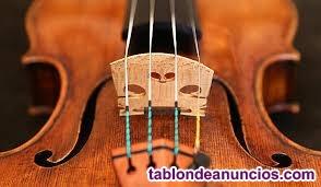 Te gustaría aprender a tocar el violín?
