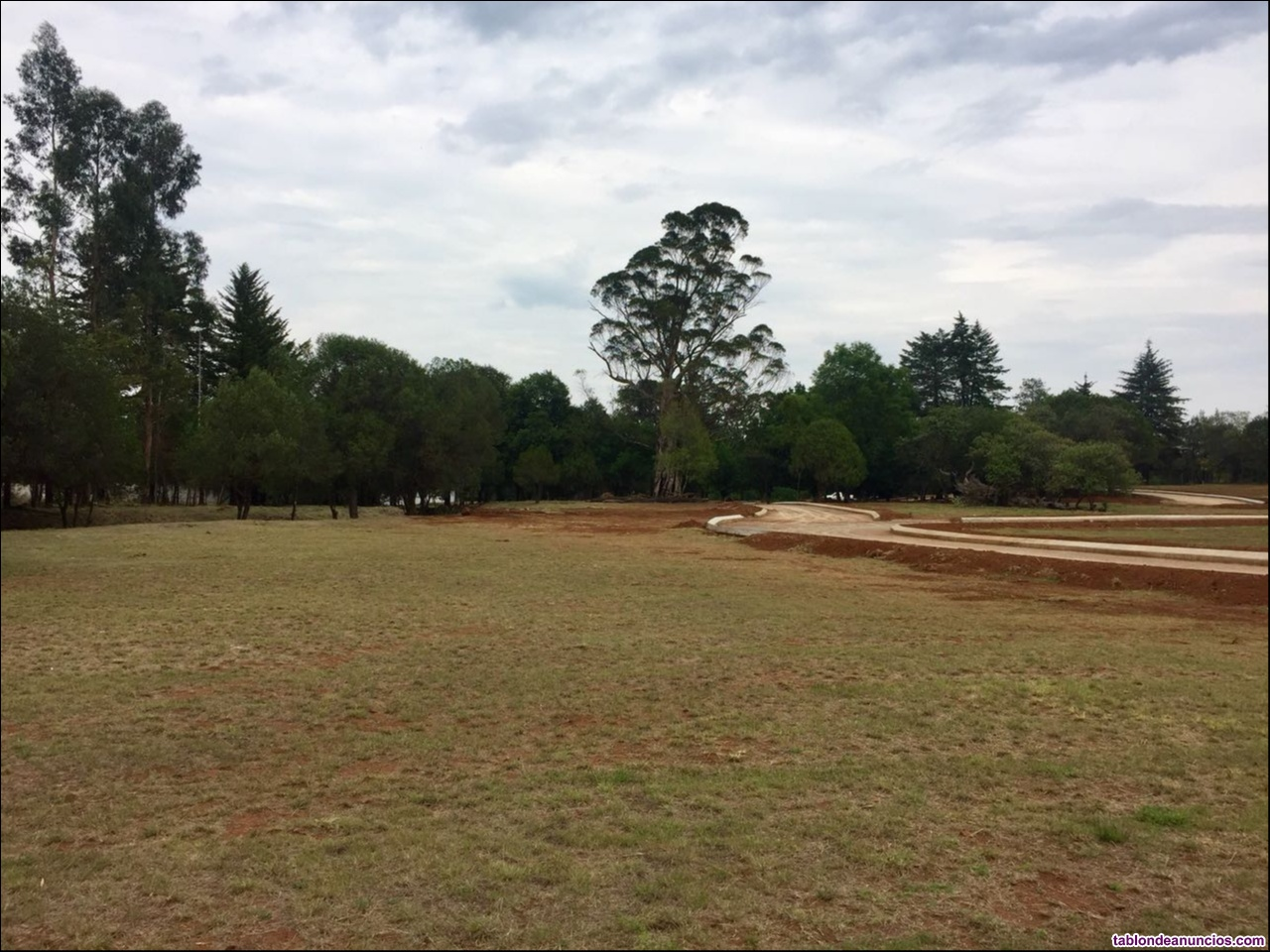Terreno residencial en huasca de ocampo, hidalgo